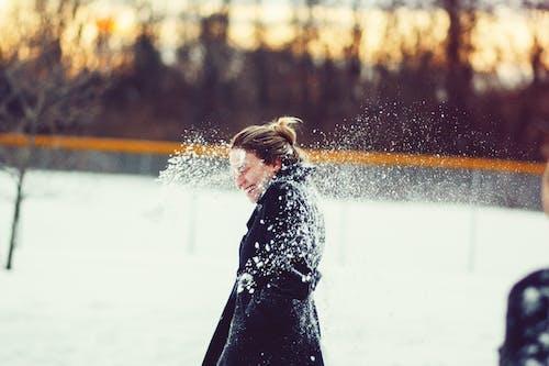 Ingyenes stockfotó évszak, fagy, hideg, hó témában