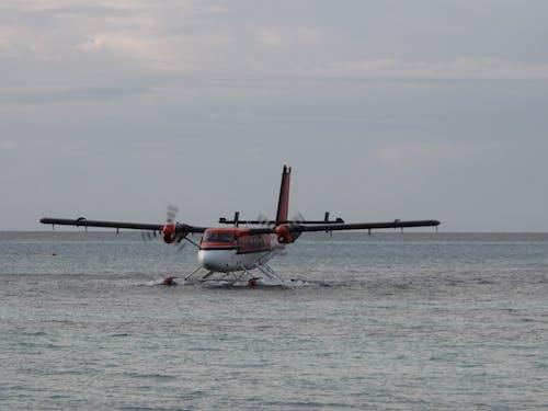 Ảnh lưu trữ miễn phí về đại dương, maldives, thủy phi cơ