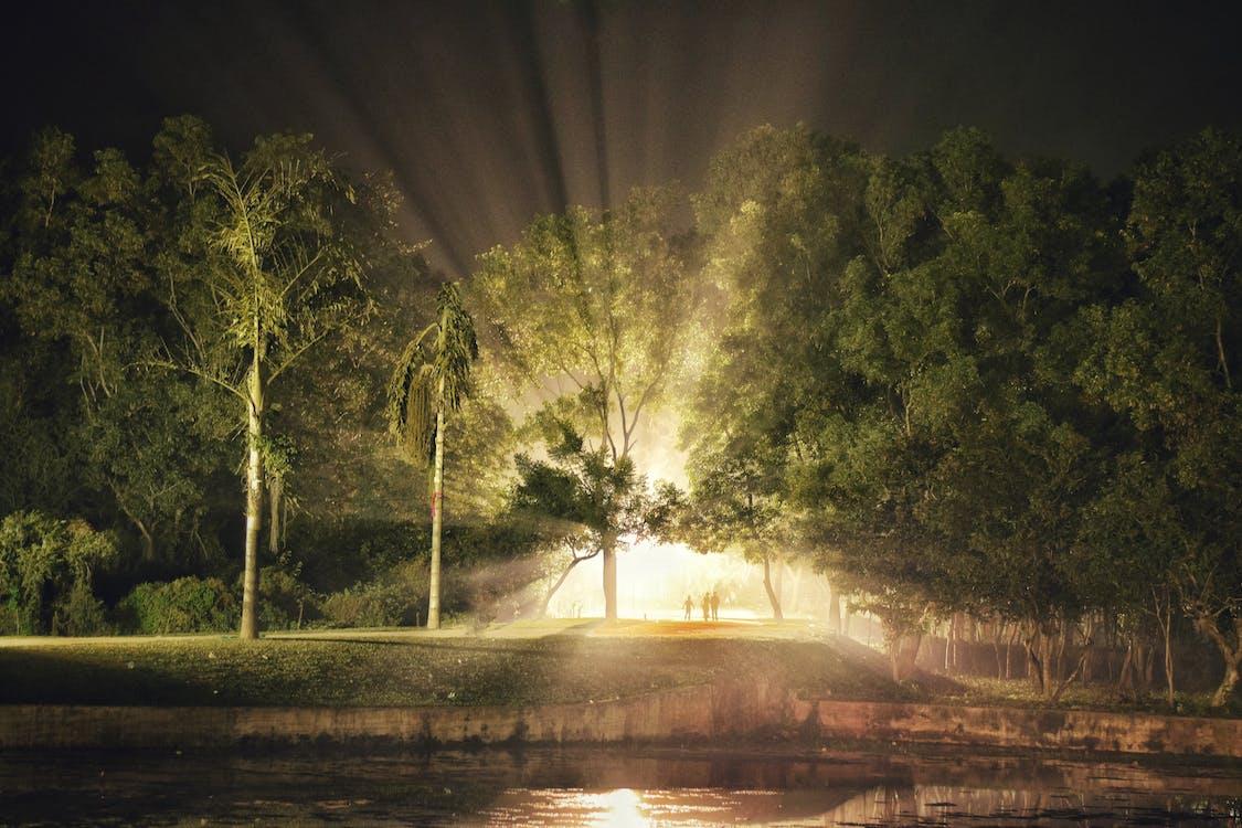 ライトショーの無料の写真素材