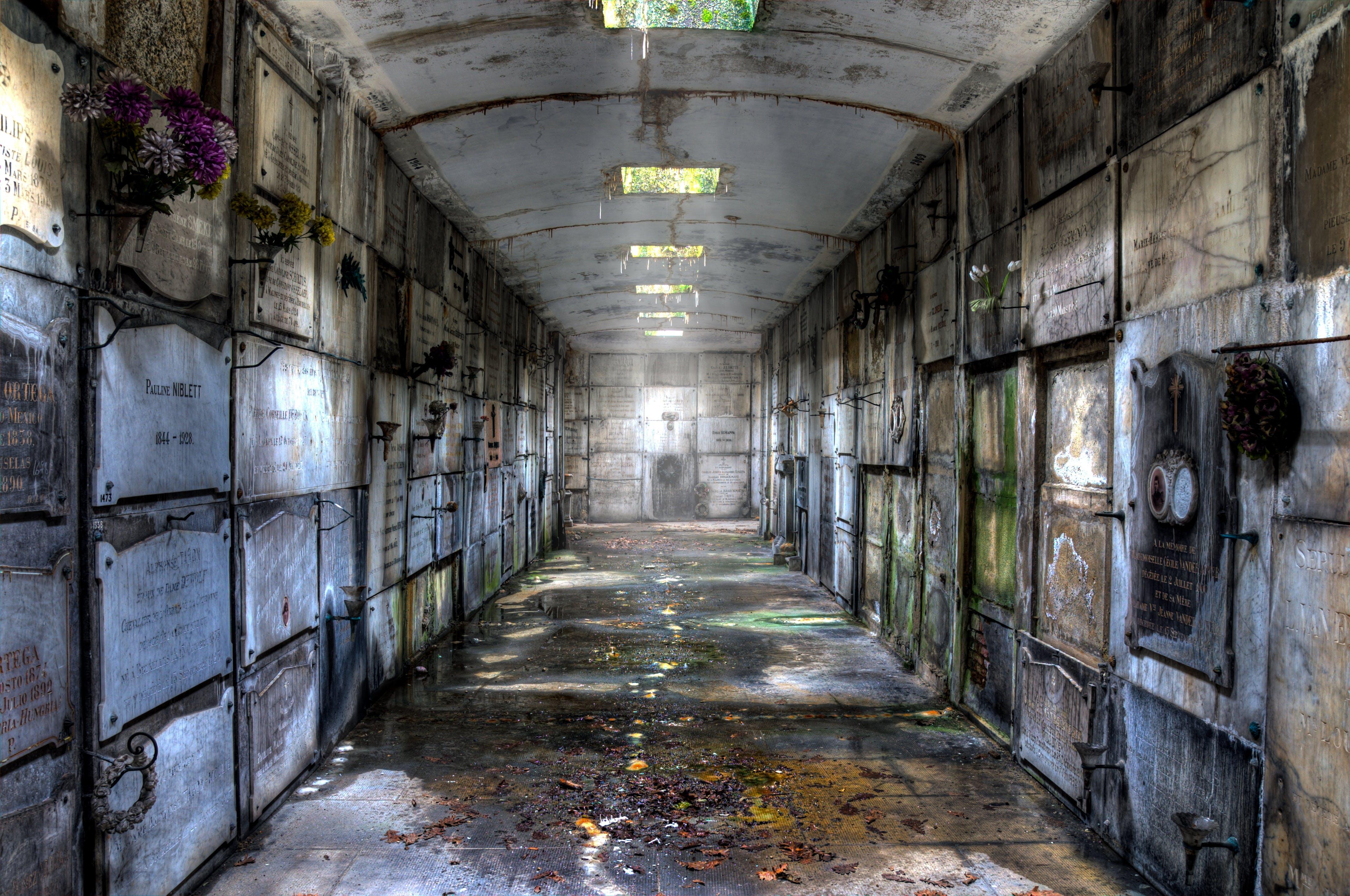 Imagine de stoc gratuită din arată-ți dragostea, cimitir, crypta, locul pierdut