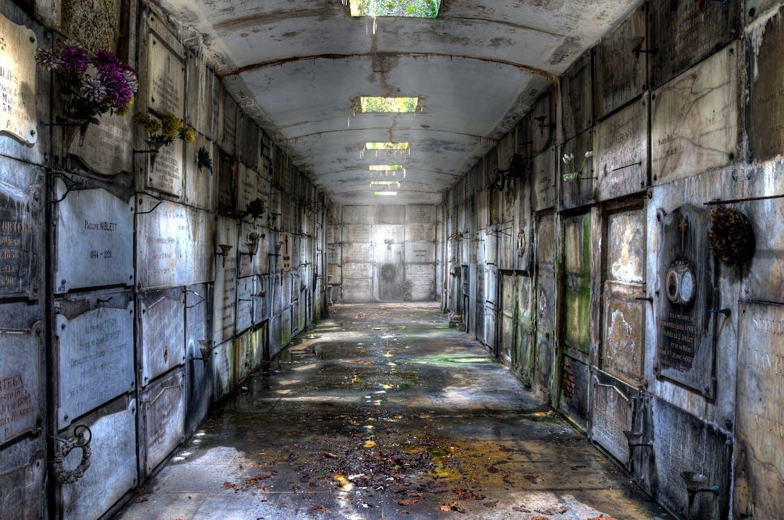 Ingyenes stockfotó cryptából, elveszett hely, föld alatt témában