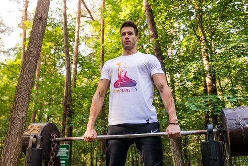 Free stock photo of fitness, forest, forest workout