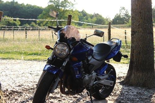 Gratis arkivbilde med åker, frankrike, motorsykkel