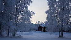 House With Snowfield