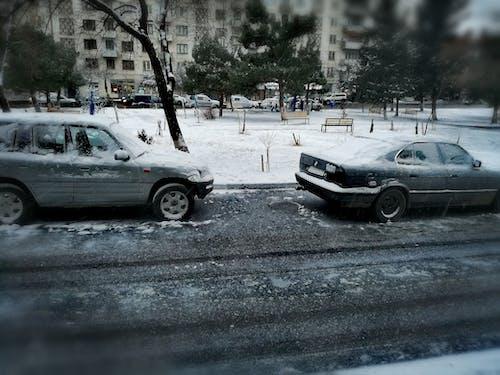 Ingyenes stockfotó hó, jég, tél, utca témában