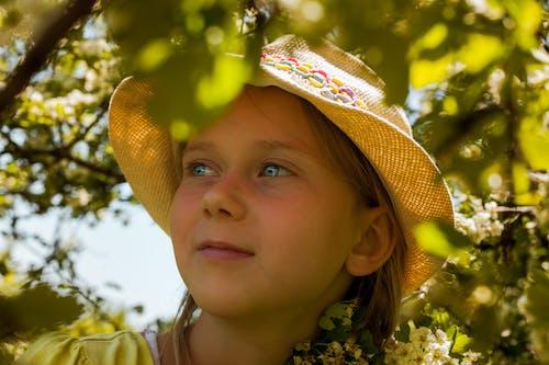 Free stock photo of baeutiful eyes, girl portrait, little girl