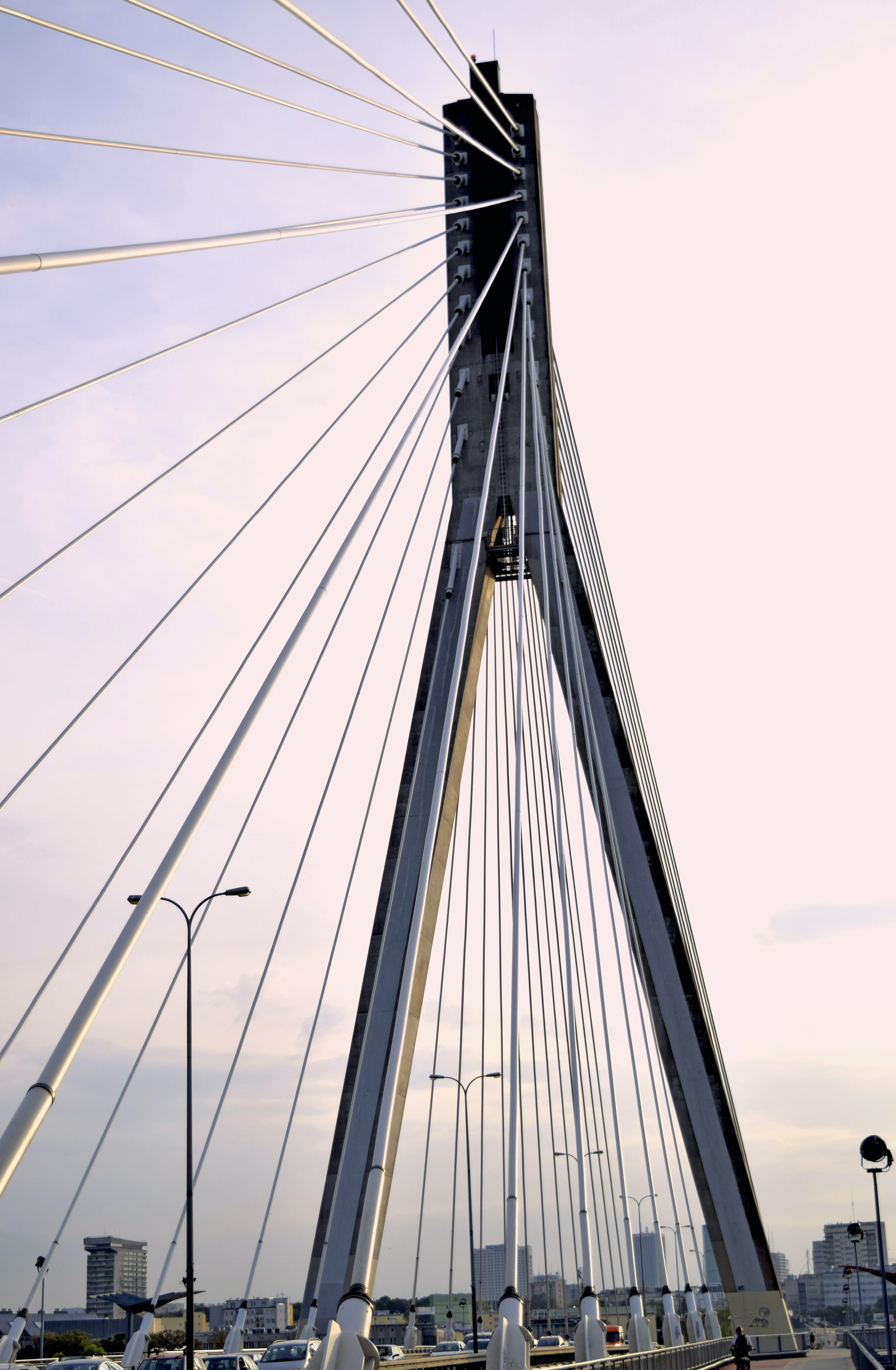 Free stock photo of bridge, lines, warsaw, swietokrzyski bridge