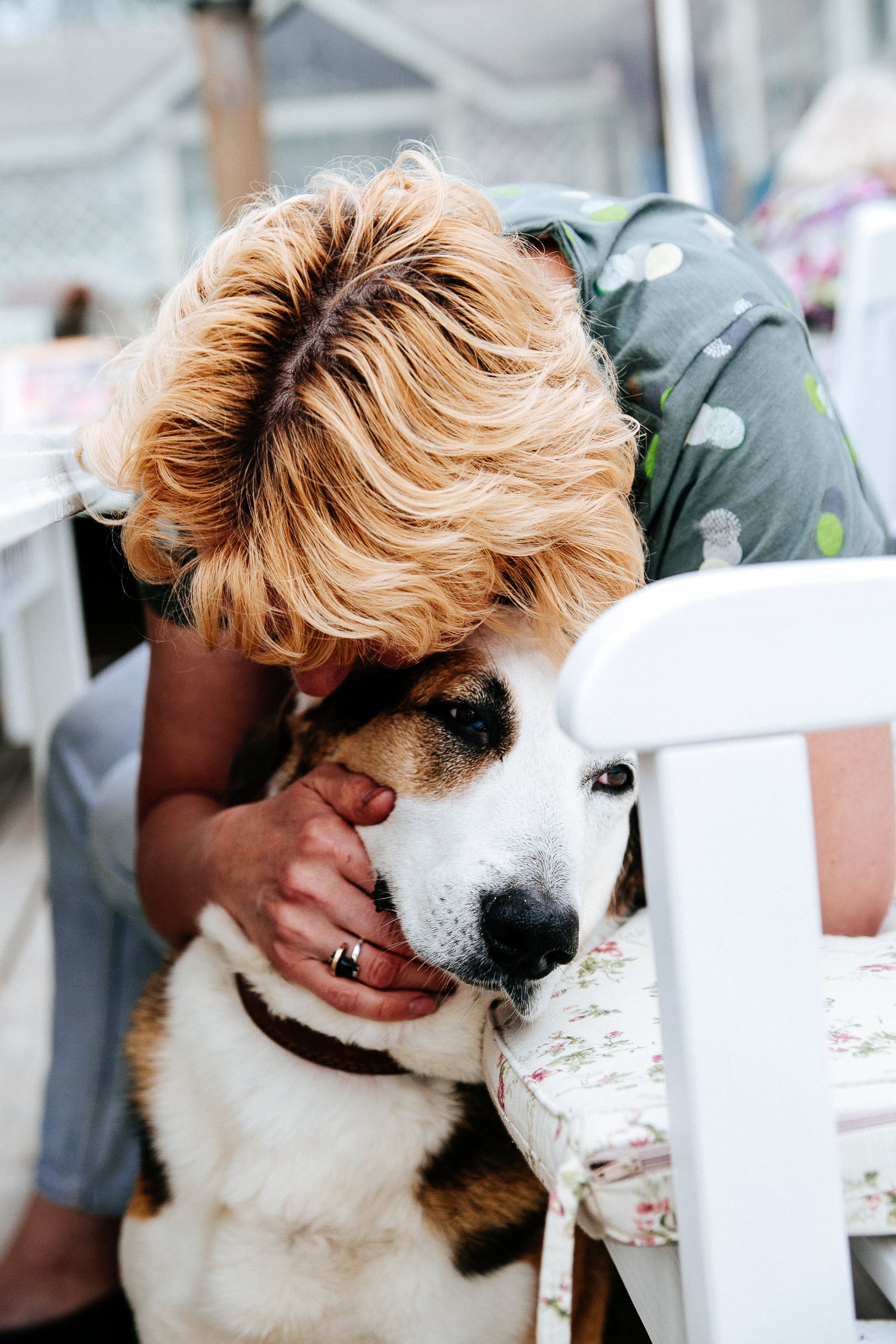 Woman in Gray Floral T-shirt Hugging White and Tan Dog