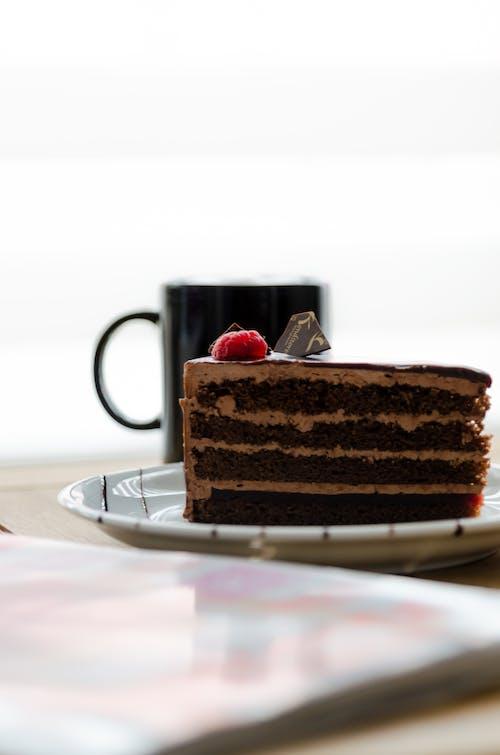 Free stock photo of cake, chocolate, chocolate cake