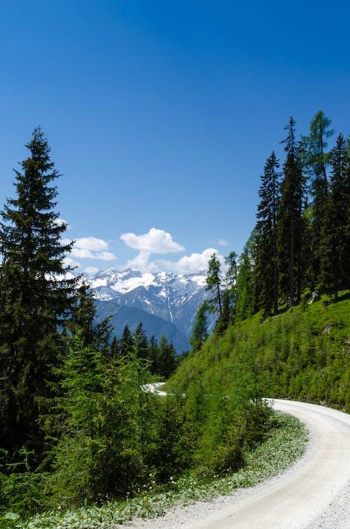 거리, 구름, 긴 머릿단, 녹색의 무료 스톡 사진