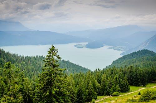 경치, 경치가 좋은, 구름, 녹색의 무료 스톡 사진