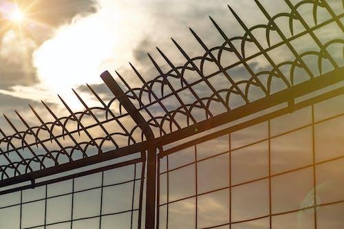 Základová fotografie zdarma na téma obloha, ostnatý drát, plápolání, plot
