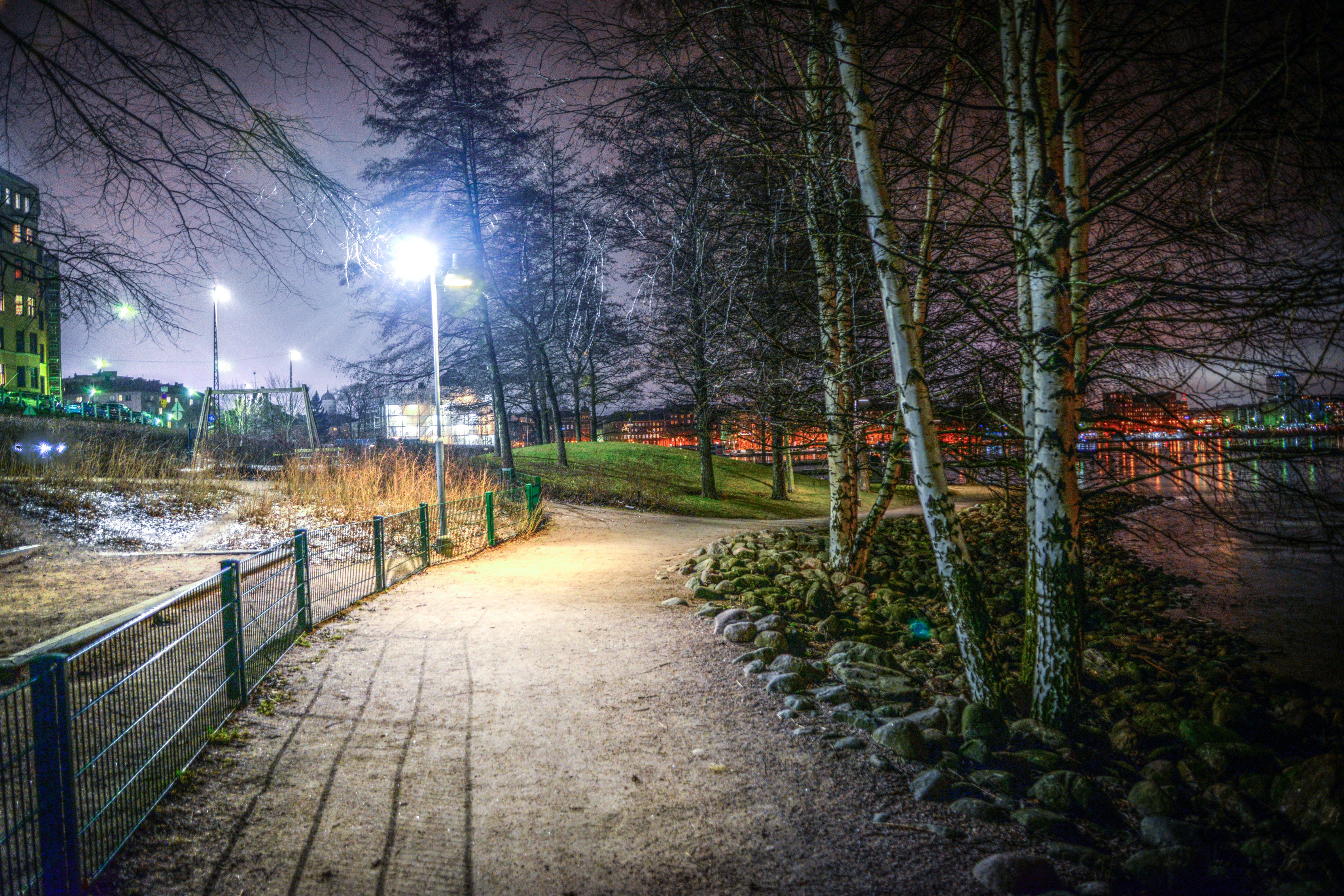 Photos gratuites de arbres, barrière, chemin, léger