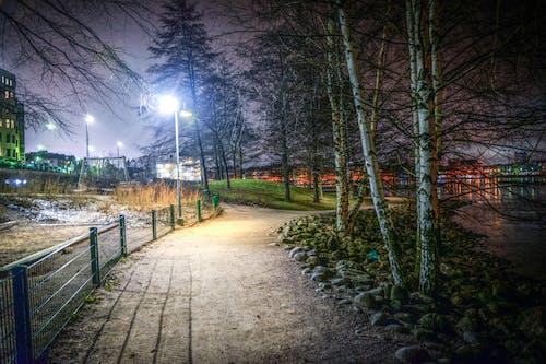 คลังภาพถ่ายฟรี ของ กั้นรั้ว, ต้นไม้, ทางเดิน, ปาร์ค