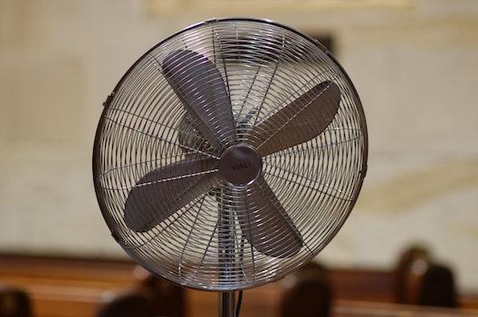 Free stock photo of church, fan, church fan