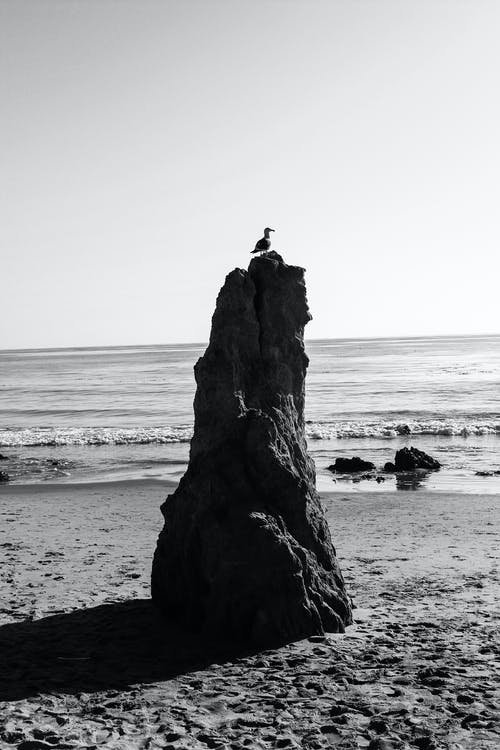 Grayscale Photo of Rock Formation on Beach