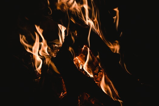 Free stock photo of firewood, fire, hot, campfire