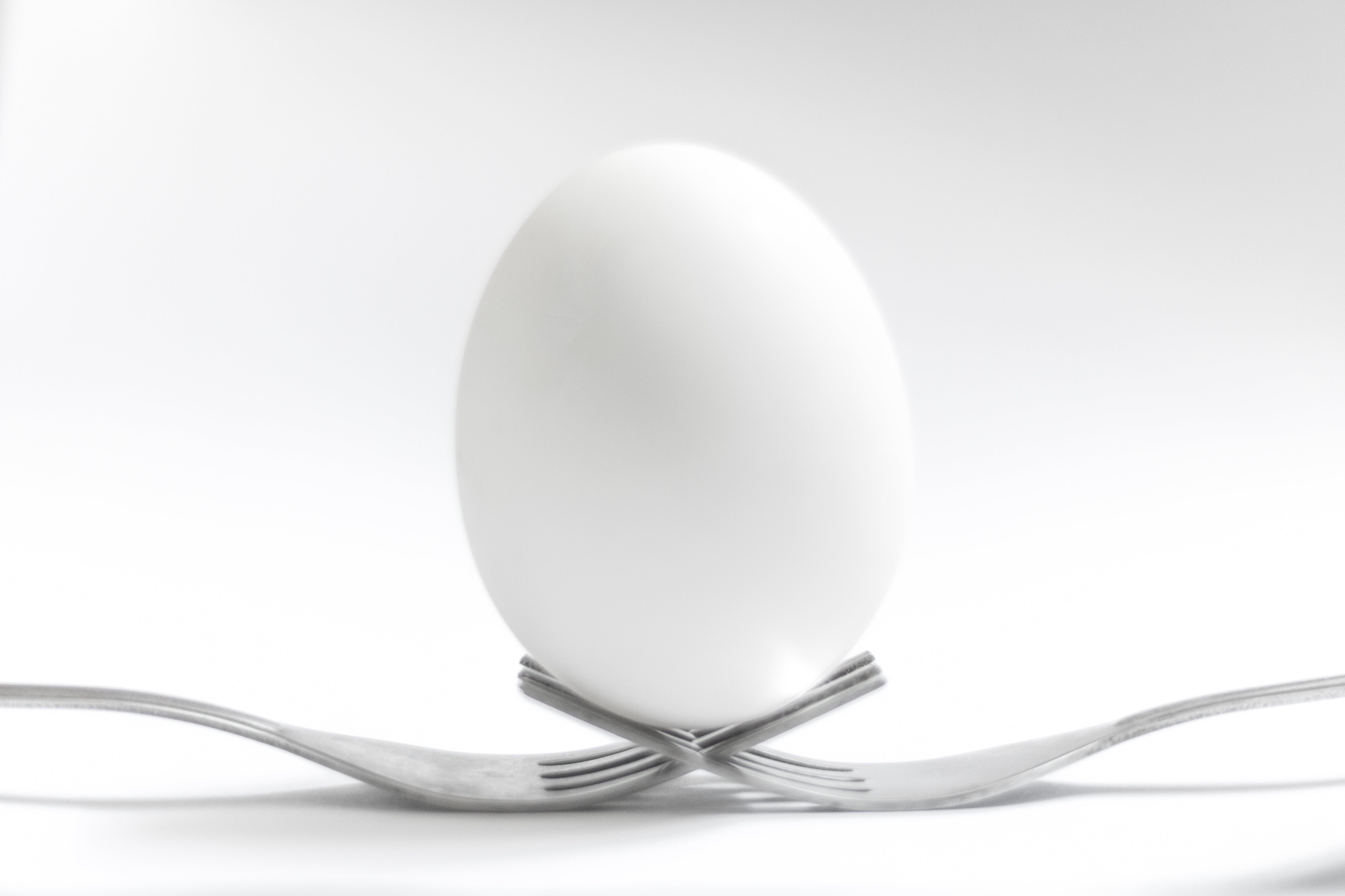 Free stock photo of balancing eggs, black and white, bnw, close-up