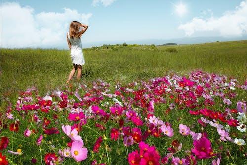 Free stock photo of beauty model, flower field, landscape background