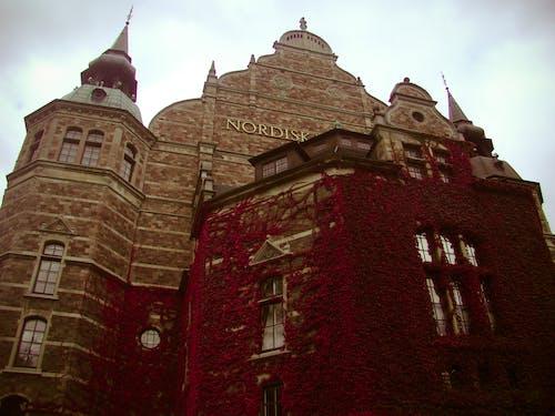 Free stock photo of nordic museum