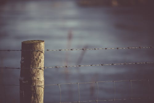 Selective Focus Photography Of Fence