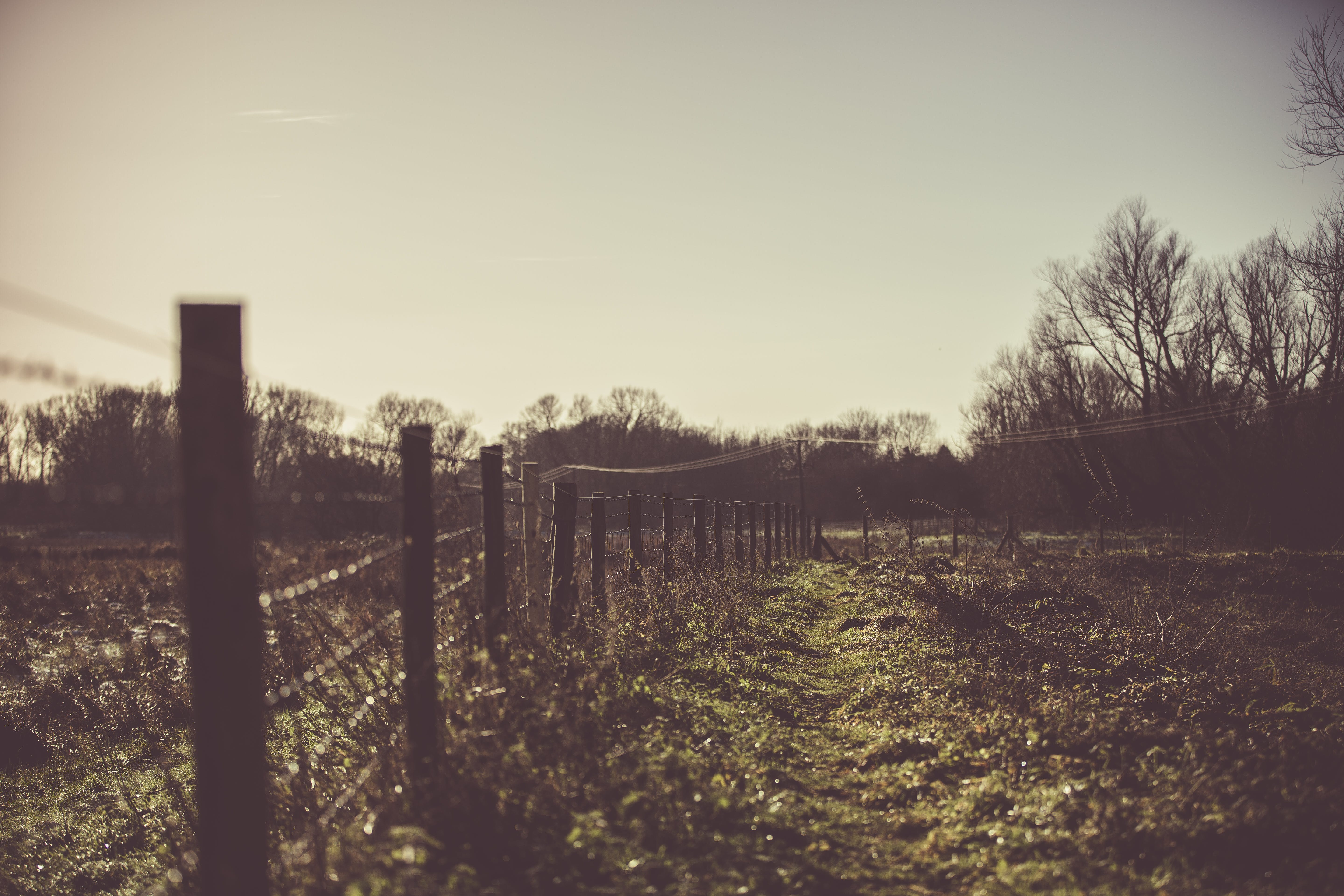 Silhouette Of Fence