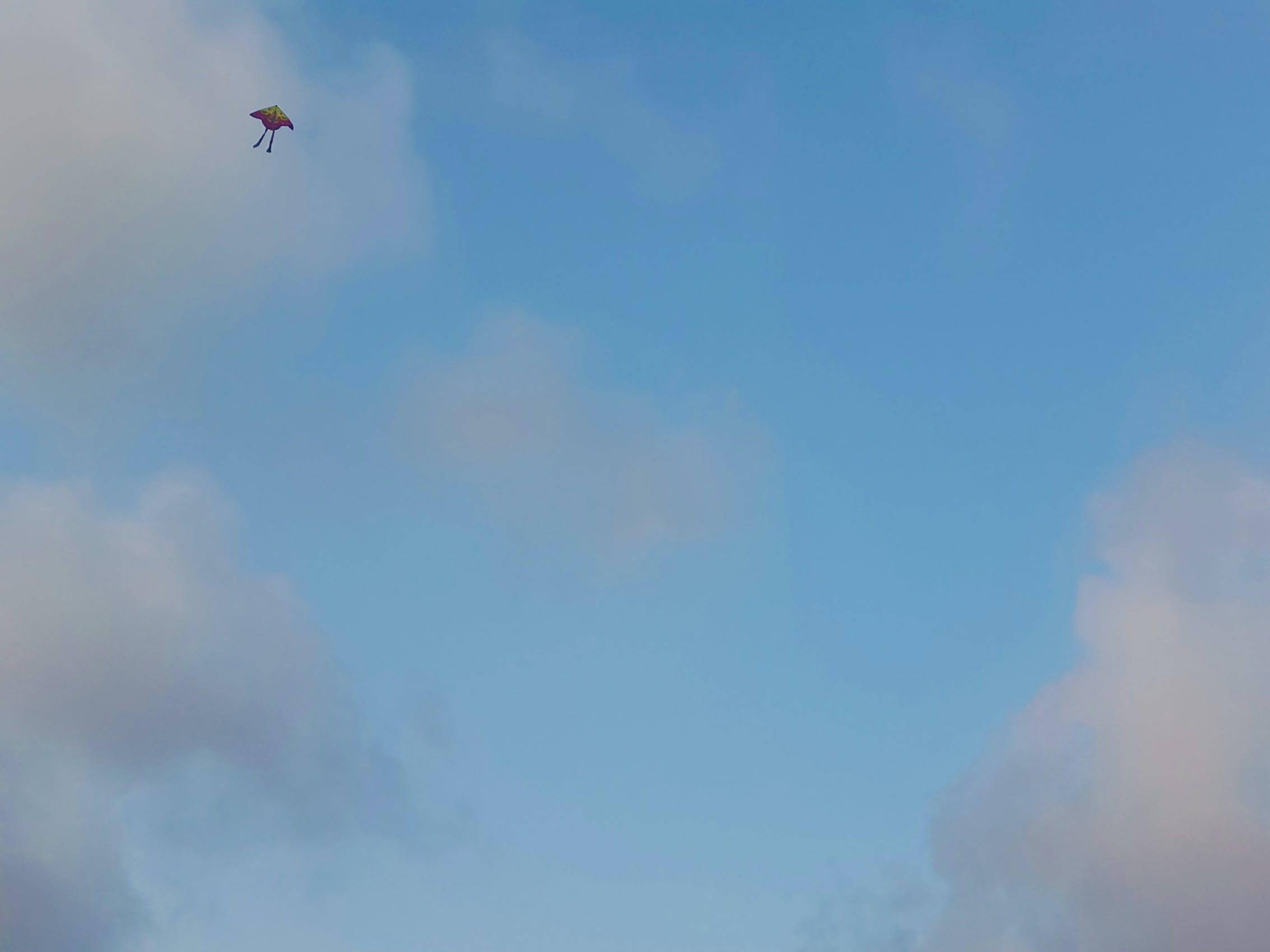 Imagine de stoc gratuită din cer, zmeu