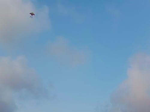 gökyüzü, uçurtma içeren Ücretsiz stok fotoğraf