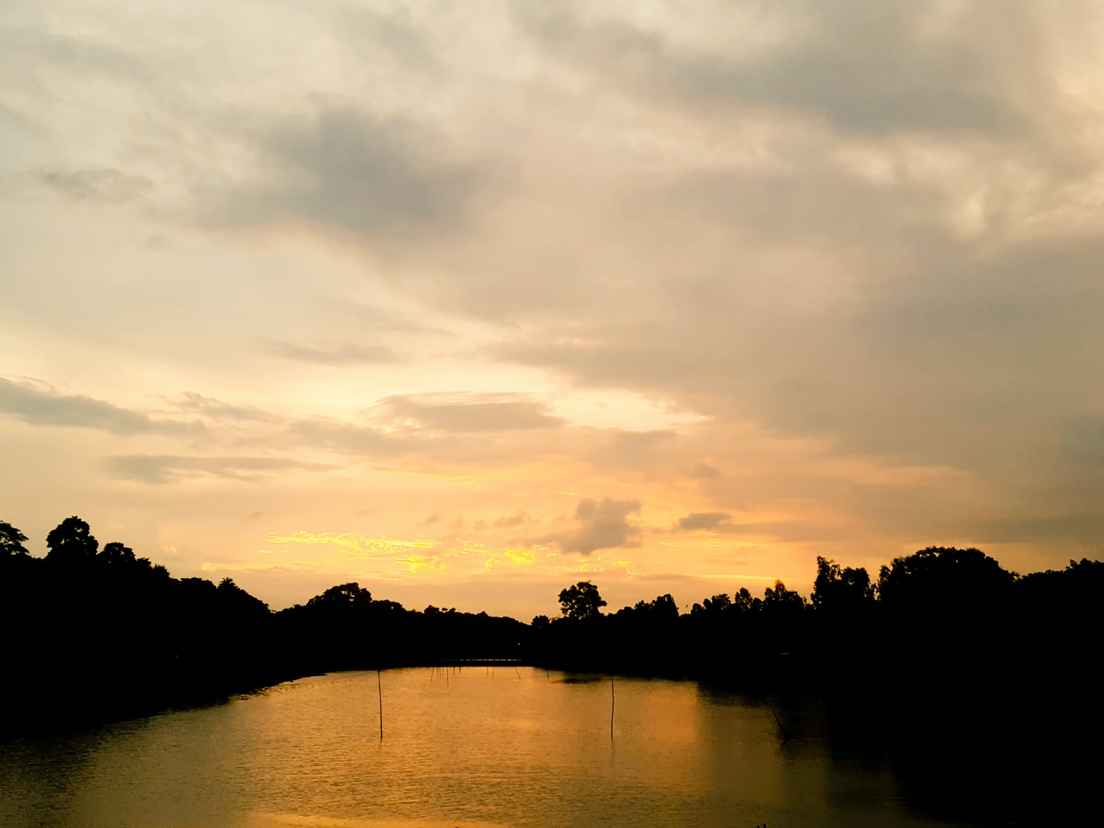 Foto profissional grátis de pôr do sol dourado