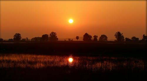 Ingyenes stockfotó Aranyló nap, esti nap, fényvisszaverődések, naplemente témában