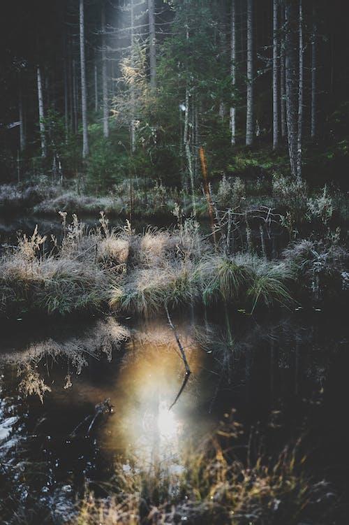 Základová fotografie zdarma na téma 4k tapeta, cestování, denní světlo