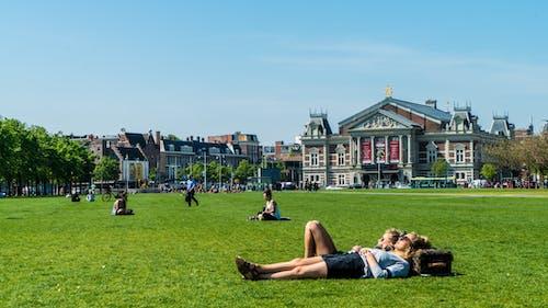 Free stock photo of amsterdam, couple, study