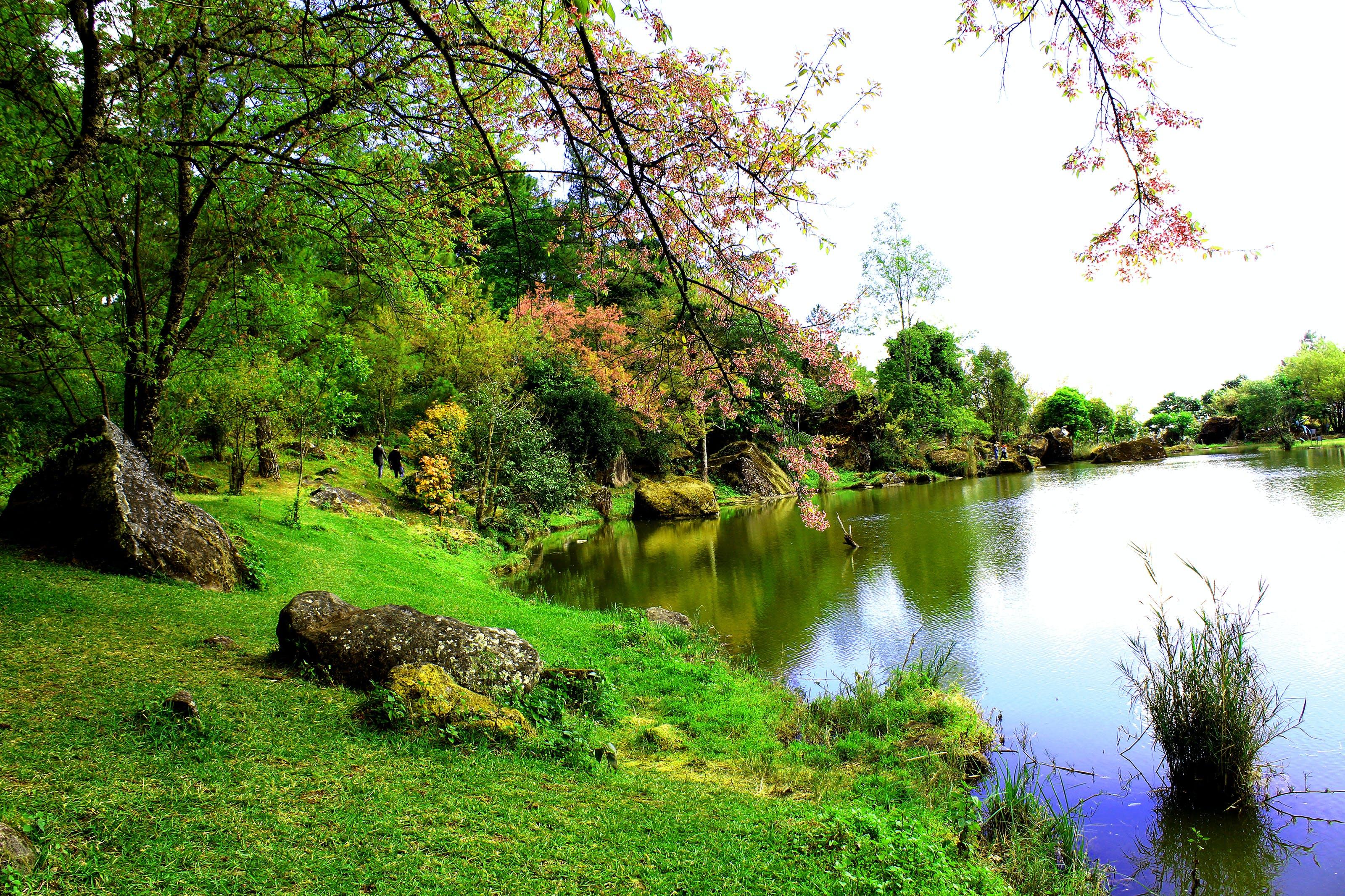 Photo Of Lake Side