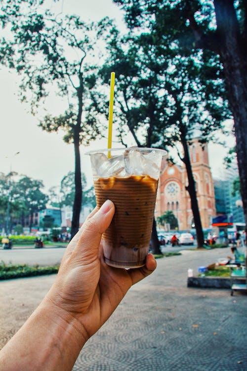 Free stock photo of coffee, sunday