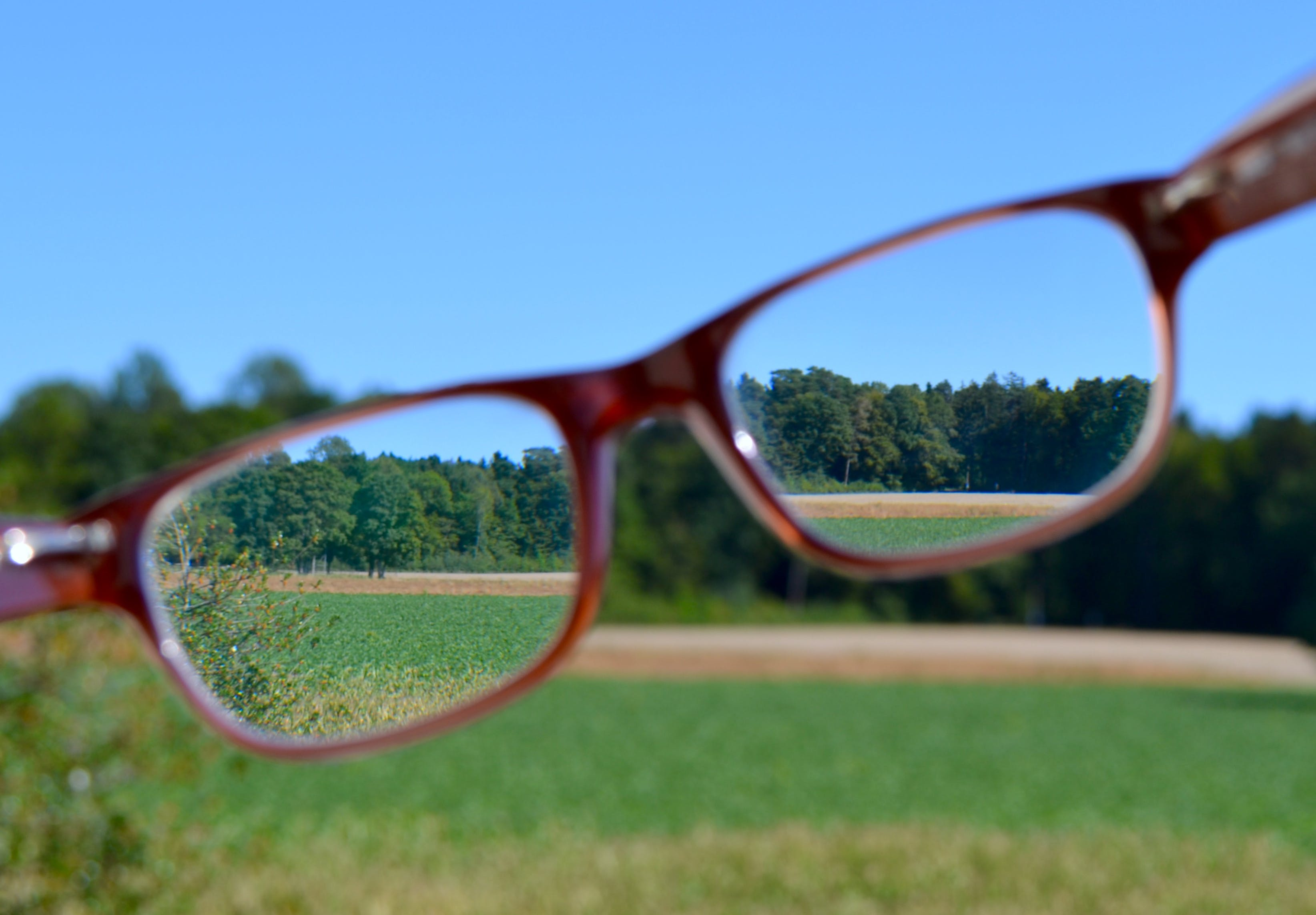 Free stock photo of landscape, glasses, focus