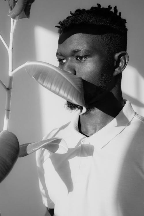 Foto profissional grátis de adulto, africano, arte