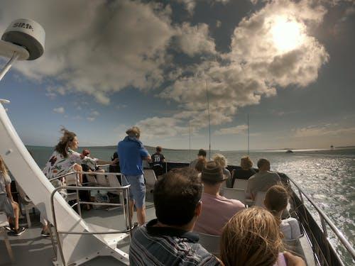 Gratis lagerfoto af båd, folk i båd