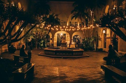 Základová fotografie zdarma na téma fontána, oranžová, strom, světla
