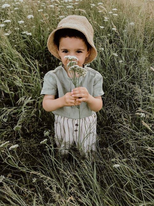 Imagine de stoc gratuită din adorabil, băiat, calm