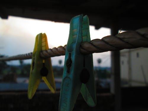 akşam, gün batımı, makro fotoğraf içeren Ücretsiz stok fotoğraf