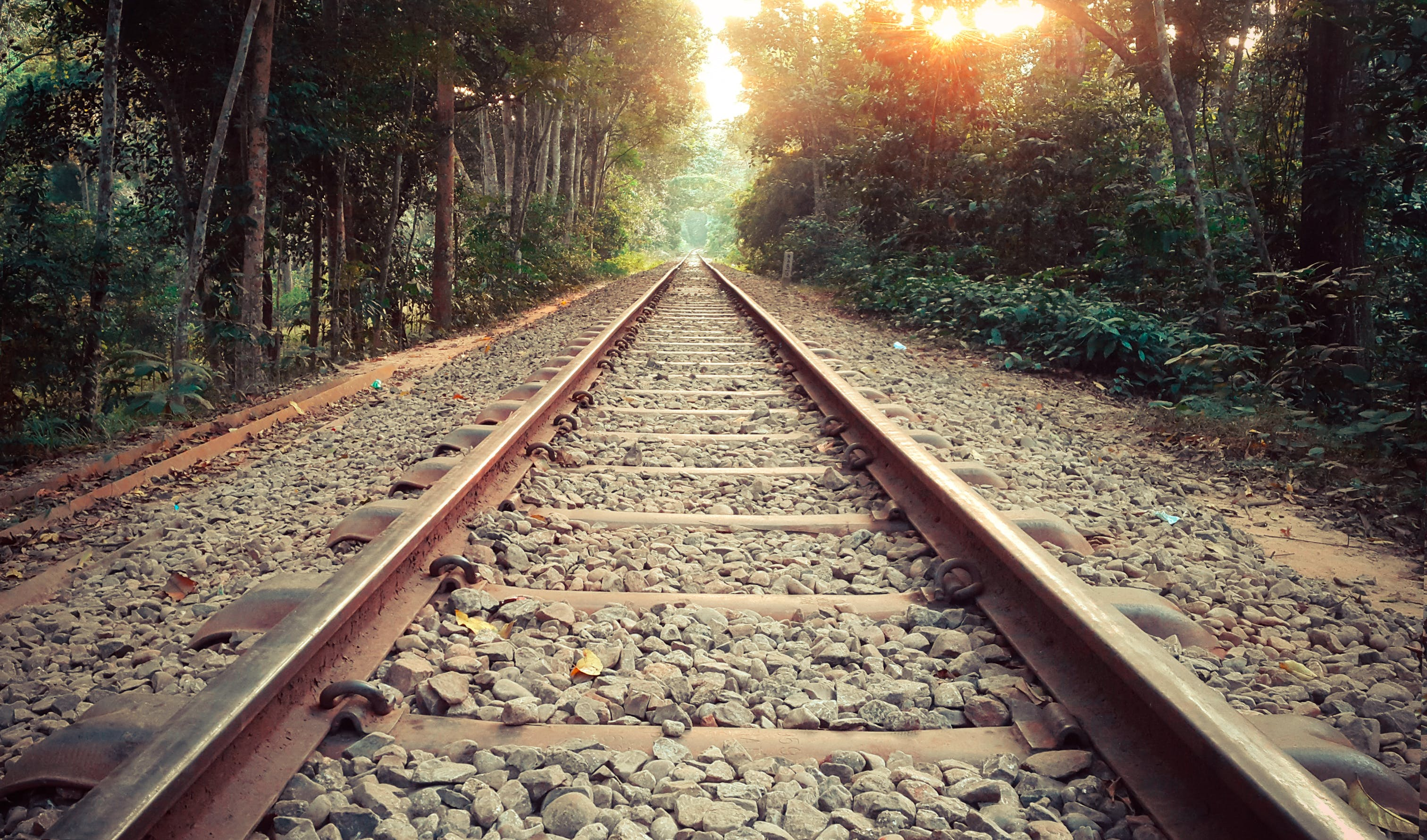 Free stock photo of path, lonely, train line