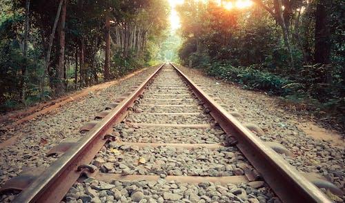 寂しい, 小径, 小道, 電車線の無料の写真素材