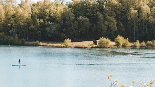Free stock photo of blue lake, blue sky, grass
