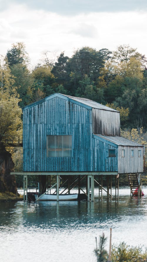Blue Wooden House Surrounded by Green Trees