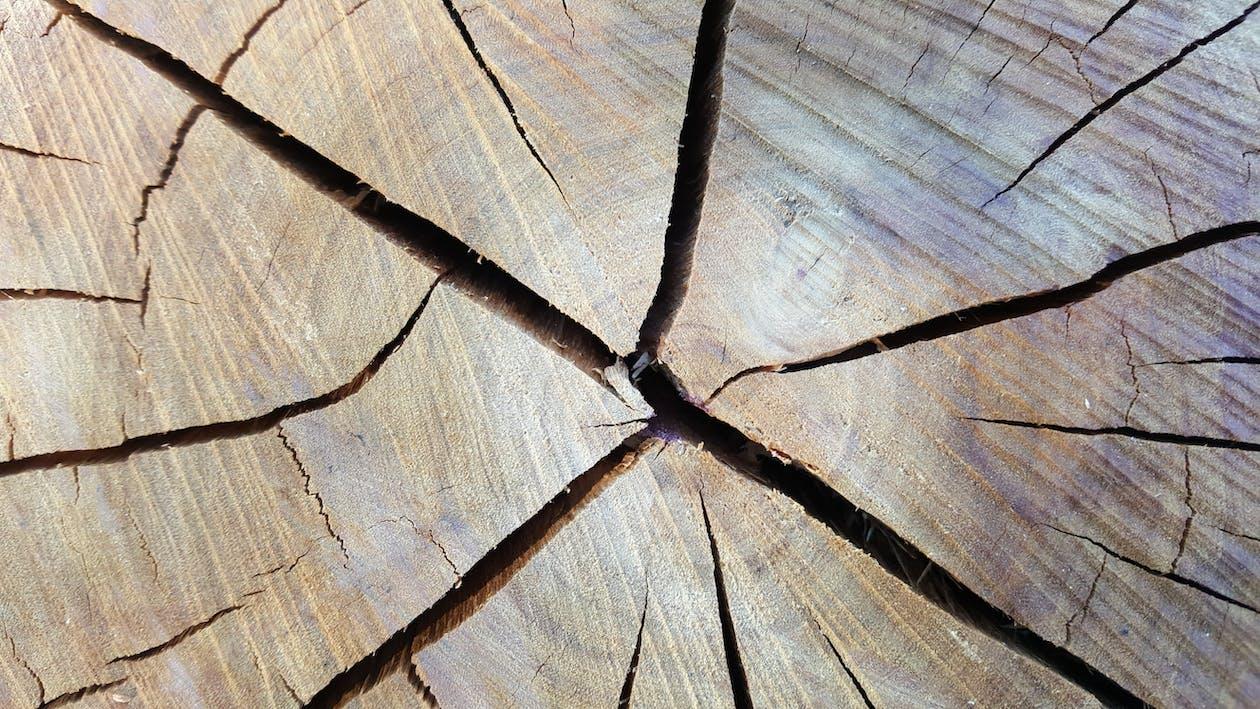 fusta, picat, tall