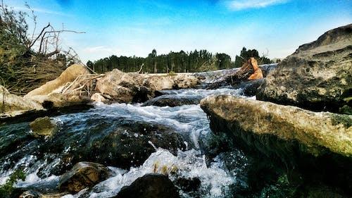 冰凍的河, 岩石, 樹, 藍天 的 免费素材照片