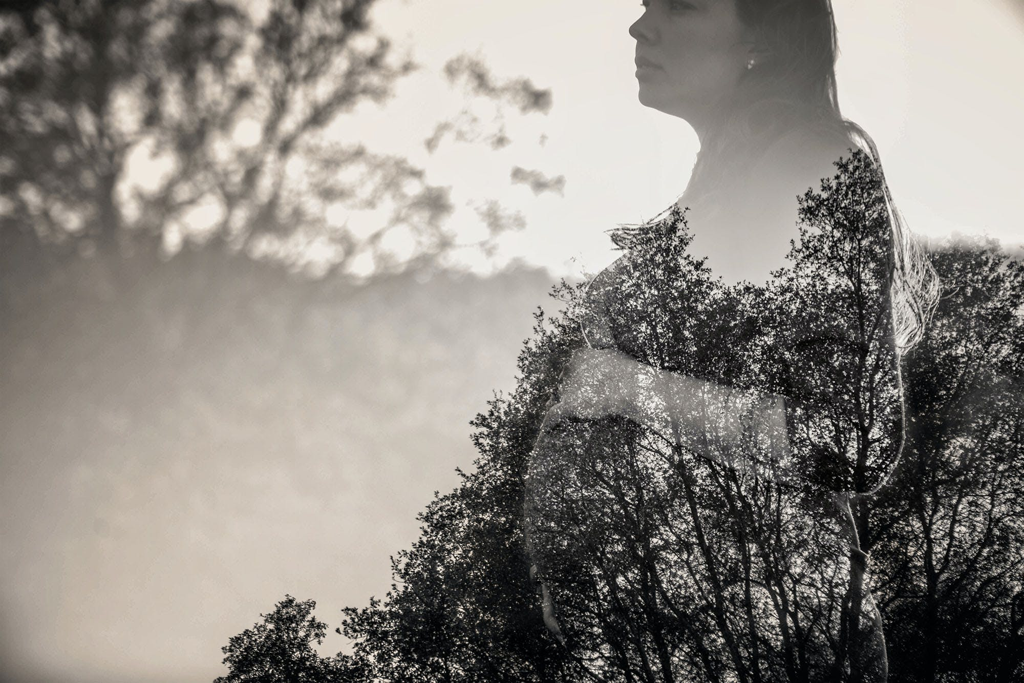 Free stock photo of double exposure, skies, trees, woman