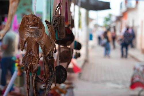 Δωρεάν στοκ φωτογραφιών με θρύλος, κουλτούρα, μαγικός, Μεξικό