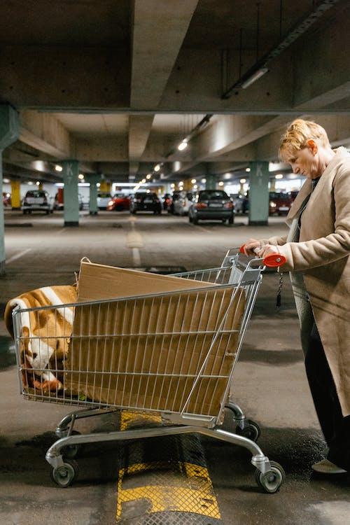 Kostenloses Stock Foto zu ältere, einkaufswagen, fahrzeuge
