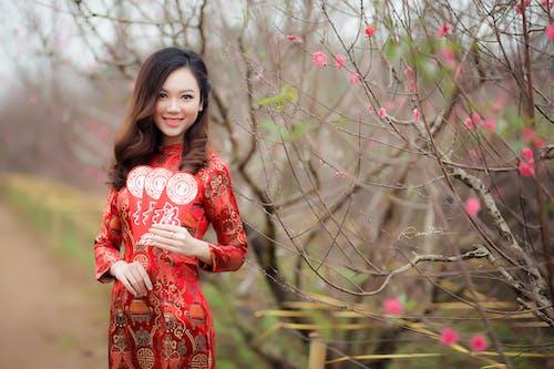 겨울, 경치, 꽃, 나무의 무료 스톡 사진